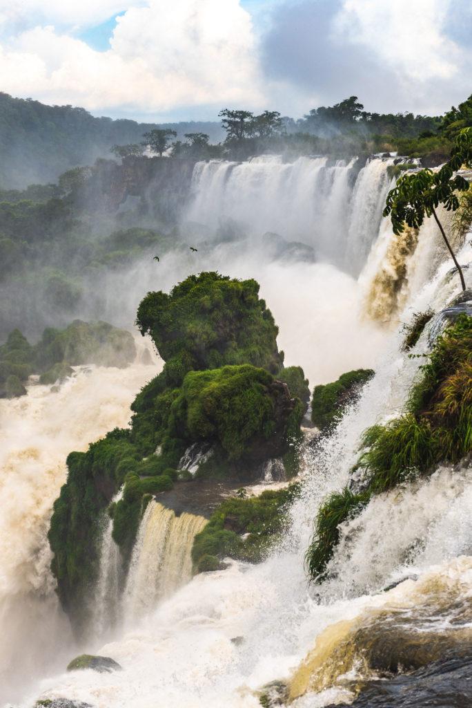 Prehistoric landscape in Iguazu